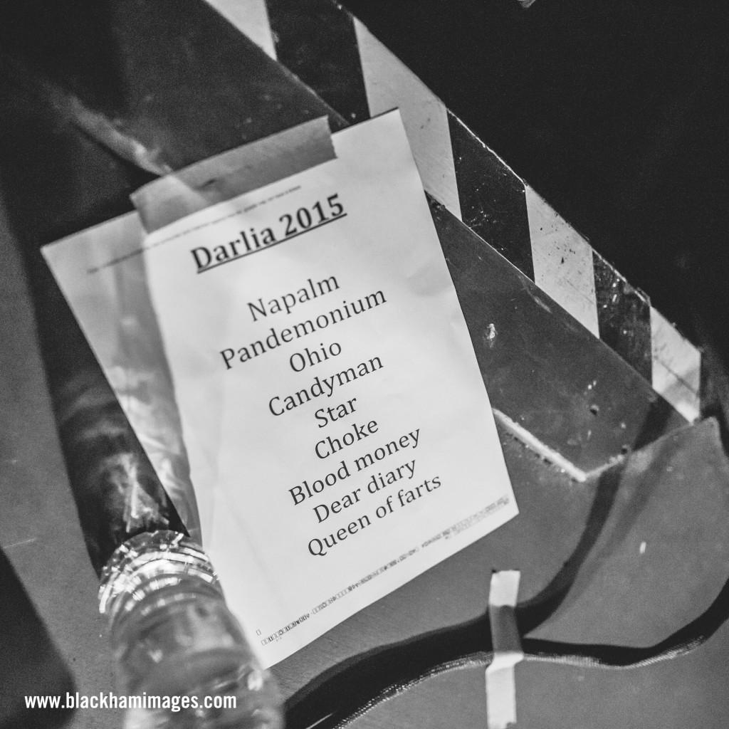 Darlia / Boileroom / Guildford